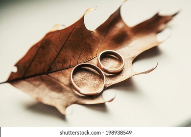 Two wedding-ring on old yellow foilage