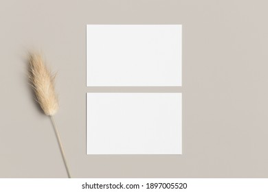 Two white business cards mockup with a lagurus decoration. 85x55mm