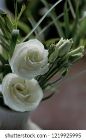 Two white lisianthus flowers and some green blossoms