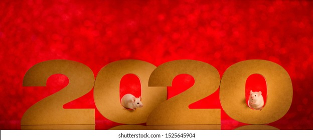 Two white mice peek out of numbers 2020.Christmas card New Year 2020.Symbol of New Year 2020 - white or metal (silver) rat ,mouse.Concept for holiday banner template, decor element