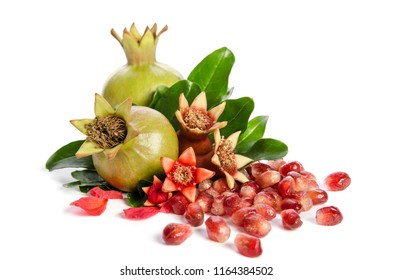 two whole green  pomegranate and seed of a pomegranate with leaves and petals isolated on white background