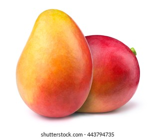Two whole mangoes isolated on white background, with clipping path. One of the best isolated mangoes that you have ever seen.