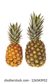 Two whole pineapple fruits, a small and a large standing in front of white background