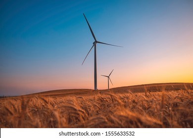 Two wind turbines rotate around generating energy in the middle of a wheat field.  Wind farms, are becoming an increasingly important source of intermittent renewable energy