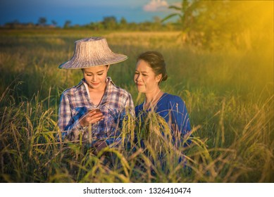 Two women farmers are using mobile phones. farmers technology and social media concept.