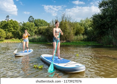 Two women stand up paddleboarding on lake. Young women doing watersport on lake. Female tourists during summer vacation.