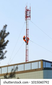 Two workers installing the base station equipment of cellular communication