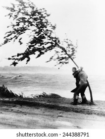 Two yachtsmen hang desperately to a tree which is almost blown over by hurricane Carol at Wollaston Beach in Quincy, Massachusetts, as their yacht smashed up against rocks. August 31, 1954.