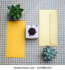 Two yellow gift envelopes, a gift box with scabiosa flower, two succules on craft paper