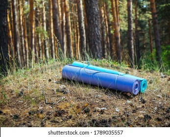 Two yoga mats, blue and purple, lie in the forest on a hill, in the sun, nobody, copy space. Two foams for a hike in the forest. Healthy lifestyle, Hiking, forest walks, meditation, unity with nature.