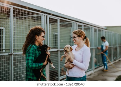 Two young adult women adopting beautiful dogs at animal shelter.