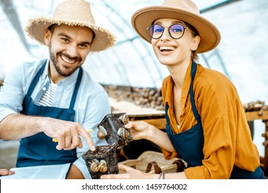 Two young beautifully dressed farmers examining snails growing process in the hothouse of the farm. Concept of farming snails for eating