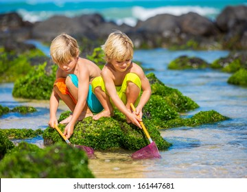 Two young boys having fun on tropical beach, happy best friends playing with fishing nets, friendship concept