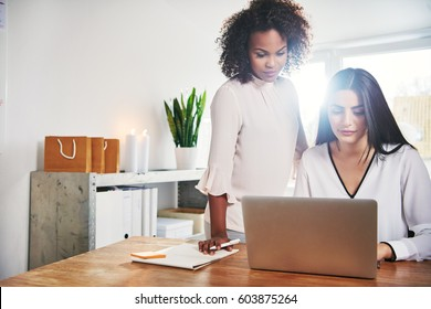 Two young female business partners working together using a laptop computer at the office with bright sun flare over their shoulders