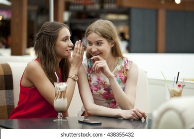 Two young girl friends sitting in a cafe talking