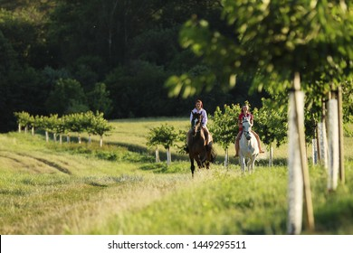 Two young girl riding horses on the walk without saddle in summer time
