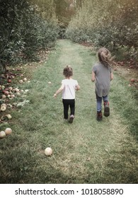 Two young girls, sisters, running through an apple orchard