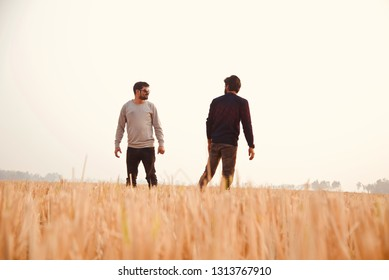 Two young men walking around an agricultural field unique photo