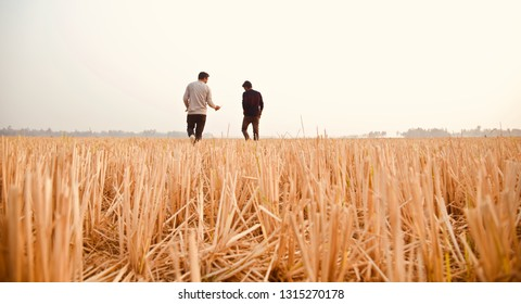 Two young men walking together around an agricultural field unique photo