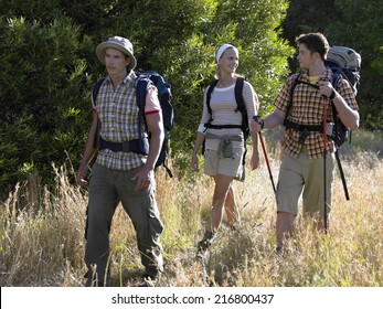 Two young men and a young woman hiking in the forest