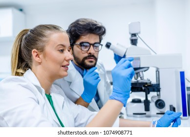 Two young pharmacist examining liquid sample. Two pharmacist communicating while working on research in a laboratory. science, chemistry, technology, biology and people concept