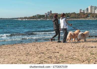 Two young women in casual wear walking with the chow chow dogs along the sandy beach in Istanbul. Urban lifestyle.