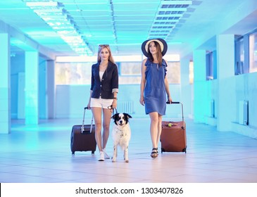 Two young women and dog border collie with suitcases in the airport lounge