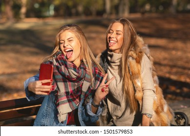 Two young women sitting on a bench and making selfie in the park