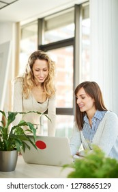 Two young women working together in office