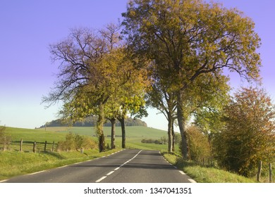 Two-lane highway in the hills of France. Old trees grow on the sides of the road