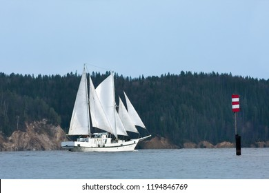 two-masted schooner passes near the dark forest shore in the fairway