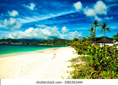 Two-mile stretch of white sand, palm trees and greenery  of Grand Anse Beach, Grenada