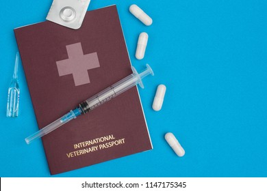 A two-ml syringe lies on a red (burgundy) veterinary (pet) passport beside which lie four white pills, an ampoule with liquid and a tablet in a package on a blue background. Top view.