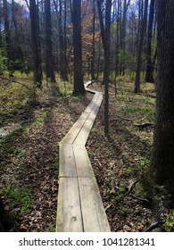 A two-plank wide boardwalk guides hikers through the bottomland forest at Yates Mill Park in Raleigh, North Carolina. Triangle, Wake County