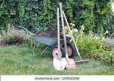 Two-wheeled garden wheelbarrow loaded with fertile soil, digging and spade shovels and a rake in the summer garden