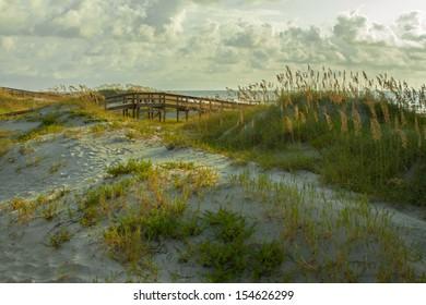 Tybee Island Georgia sand dunes