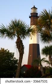 Tybee Island Lighthouse Through the Palm Trees, Near Savannah, GA Vertical