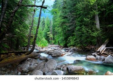 Tye river scenic creek in Northcascades national forest,washington