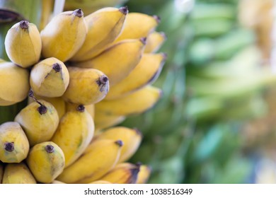 Type of banana in Thailand.