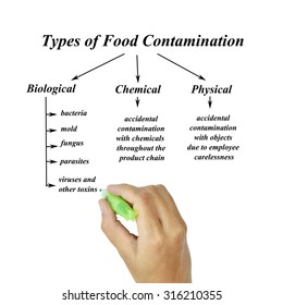 Types of food contamination image for use in manufacturing (Training and presentation )