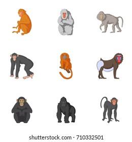 Types of orangutans icons set. Cartoon set of 9 types of orangutans  icons for web isolated on white background