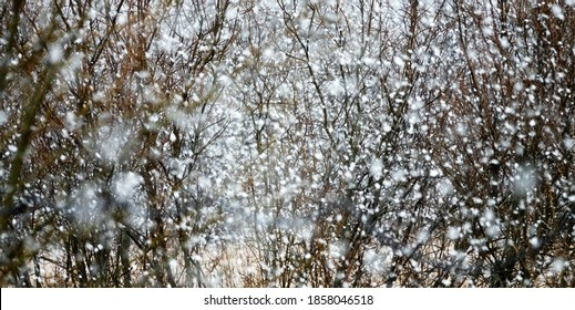Types of precipitation: sleet, flurries. Sheet of snow, snow squall. Thick heavy snow is coming in beginning of winter and spring and it melts quickly