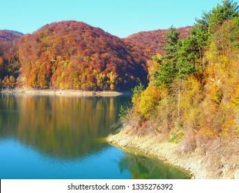Typical autumn colours at Paltinu lake, Prahova County, Romania