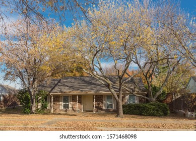 Typical bungalow style house in Dallas, Texas suburbs during fall season with colorful autumn leaves. Middle class neighborhood with single story residential home with mature tree, cloud blue sky