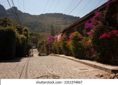 Typical cobbled streets that are located within a pictures que village in a state of Mexico standing out with foliage of Mexican pink and green leaves