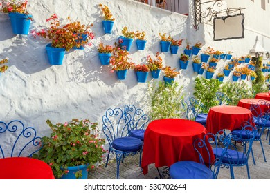 Typical decorated facade of house with flowers in blue pots in Mijas. Malaga province, Andalusia, Spain.