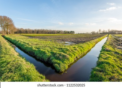 Typical Dutch agricultural landscape with two ditches in a perpendicular angle with each other. It is a sunny and windless day in the winter season. The water surface is mirror smooth.
