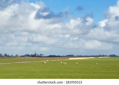 Typical Dutch landscape with sheep, a windmill, farmland and beautiful clouds.