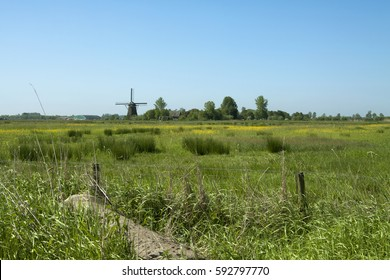 Typical Dutch landscape with windmill in a green environment and blue sky. Image by Sonja Riedijk.