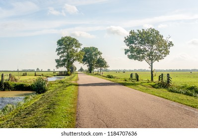 Typical Dutch polder landscape in the Dutch region Alblasserwaard, located in the National Landscape called The Green Heart in the province of South Holland. It is at the end of the summer.